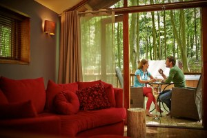 Forest Holidays, Forest of Dean, places to stay, Gloucestershire, log cabins, short break, stay, accommodation