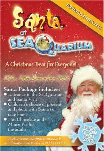 Advert for Aquarium christmas